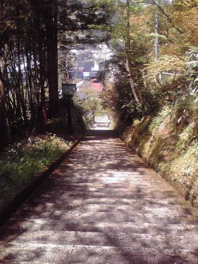 城ヶ山公園への石段
