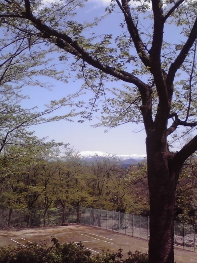 立山連峰を垣間見て2
