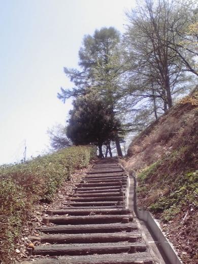 城ヶ山公園3