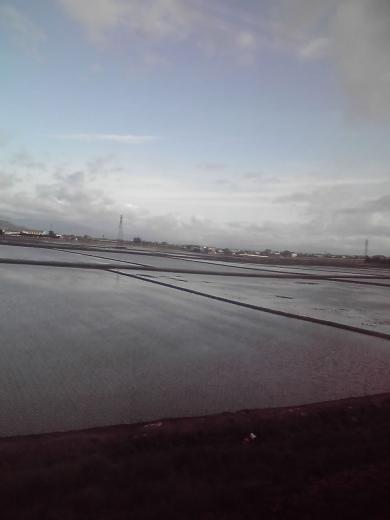 琵琶湖線の車窓から②