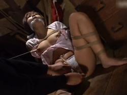 緊縛人妻を針ローラー責め!鼻フック調教で牝奴隷をいたぶりアクメ! - エロ動画 アダルト動画