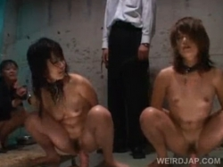 凌辱調教動画|女の子2人にスパンキングしながらディルドオナニーさせて撮影するwww - エロ動画 アダルト動画(1)