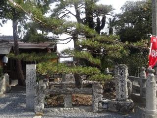 76金倉寺-松25