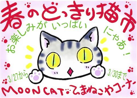 どっきり猫2014