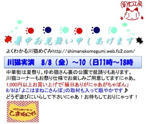 ブログ8月ゆめ猫DM