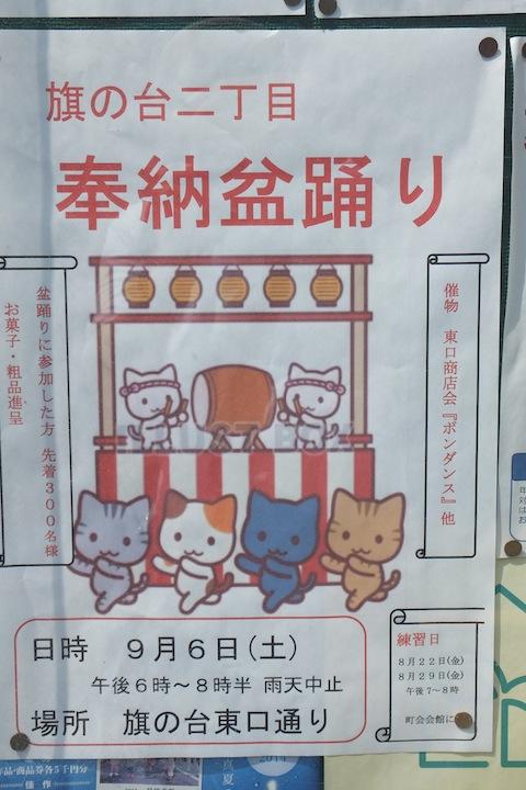 盆踊り猫DSCF2763 のコピー