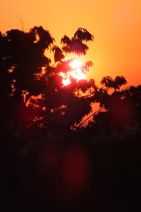 初夕焼けDSCF2641 のコピー