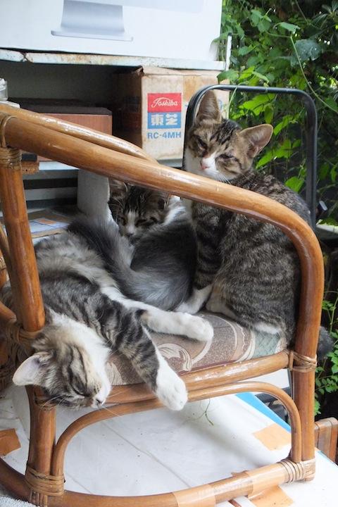 3匹椅子S0564307 のコピー