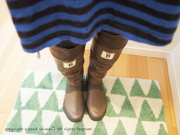 20140702野鳥の会長靴2