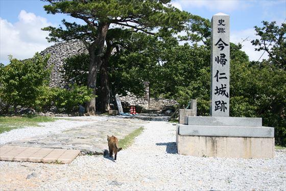 沖縄0606015