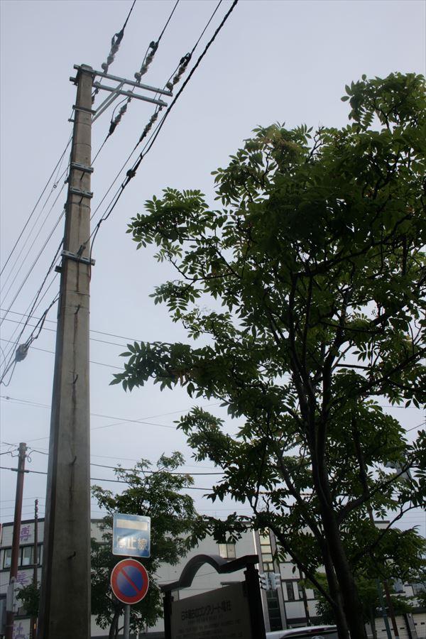 0809 北海道028