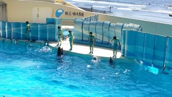 新江ノ島水族館へ行ってきました。