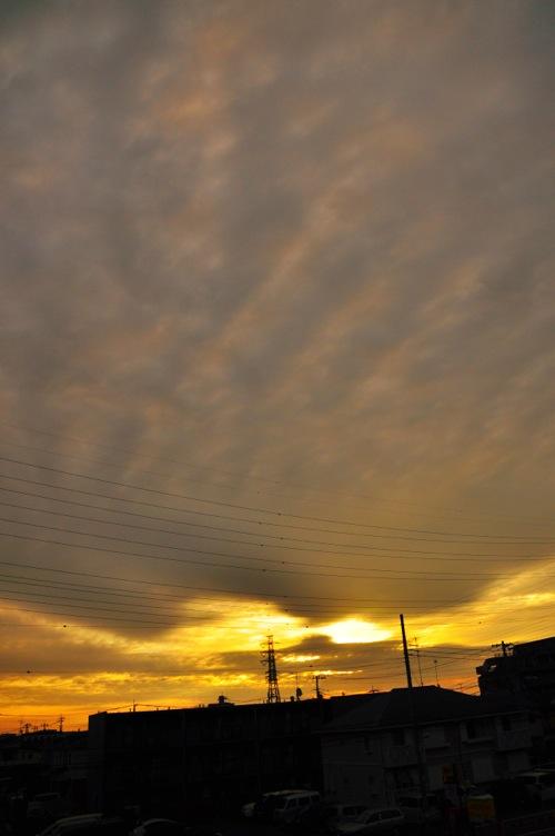 th_写真 2014-09-08 5 46 24 (1)