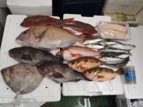 4鮮魚セット2014228