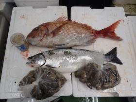 9鮮魚セット2014228