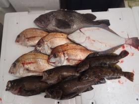 1鮮魚セット2014331