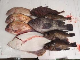 2鮮魚セット2014331