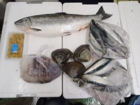 3鮮魚セット2014430