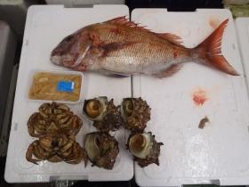 12鮮魚セット2014430