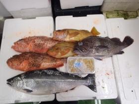 16鮮魚セット2014430