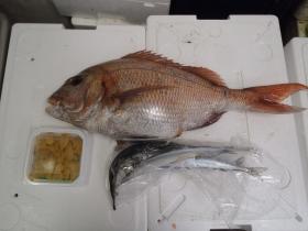 3鮮魚セット2014627