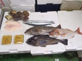 2鮮魚セット2014627