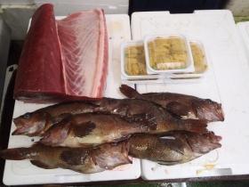 11鮮魚セット2014627