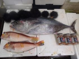 19鮮魚セット2014627