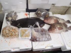 20鮮魚セット2014627