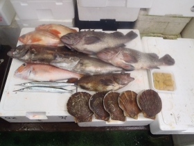 22鮮魚セット2014627