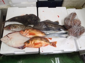 6鮮魚セット2014630