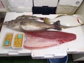 9鮮魚セット2014630
