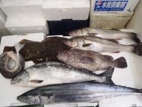 2鮮魚セット2014731