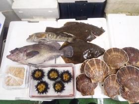 8鮮魚セット2014731