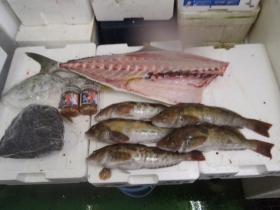 8鮮魚セット2014818