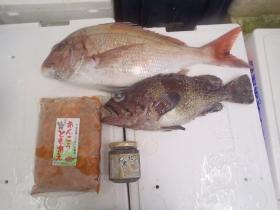 9鮮魚セット2014830