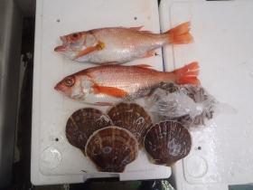 10鮮魚セット2014830