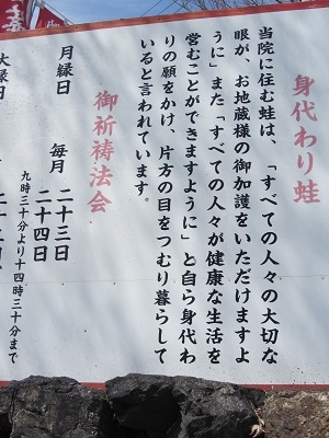 IMG_4991 kinomoto
