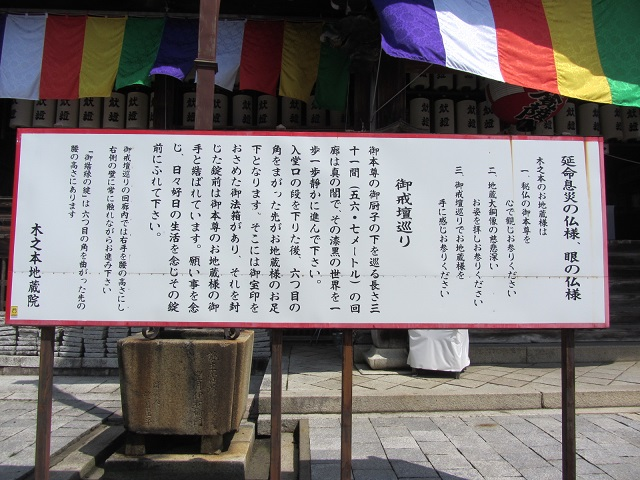 IMG_4996 kinomoto