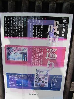IMG_5005 kinomoto