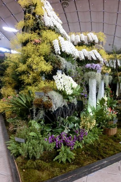 オープンクラス優良賞 「らんの庭」日本洋蘭農業協同組合