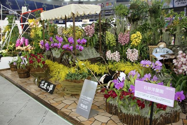 オープンクラス奨励賞 「花屋の夢」石井洋蘭園