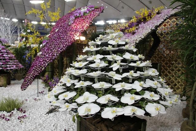 オープンクラストロフィー賞 「蘭庭」 第一花壇
