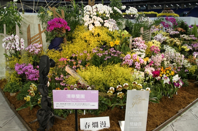 オープンクラス 奨励賞 「春爛慢」 清華蘭園