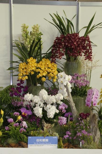 オープンクラス 海外奨励賞 佳和蘭園