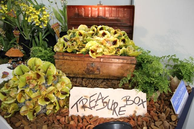 海外テーブルディスプレイ 「TREASURE BOX」オルヒデーン デュアブッシュ