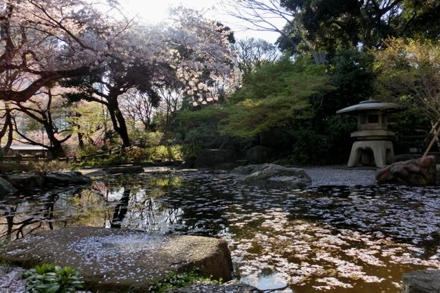 池を配した和風庭園