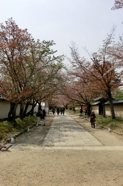 三宝院への参道