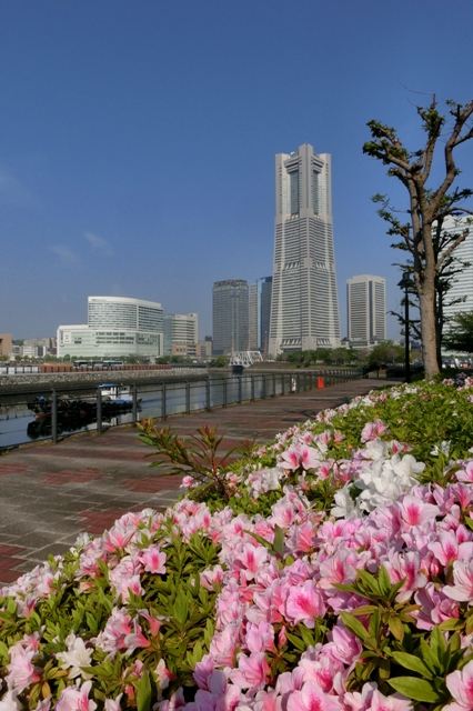 ナビオス横浜からみた横浜ランドマークタワー