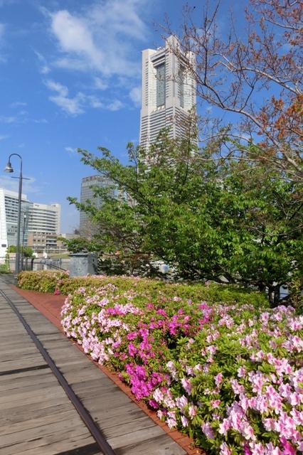 横浜ランドマークタワ-